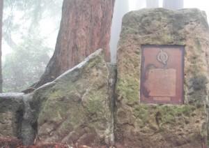 2017 5-28 foggy plaque