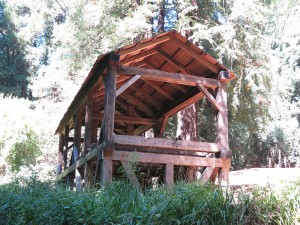 800px-Old-Mill-Park-Mill-Valley-Florin-WLM-8