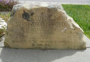old-redwood-sign